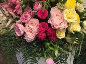 Garnier flowers