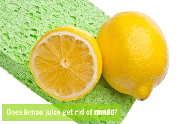 does lemon juice get rid of mould