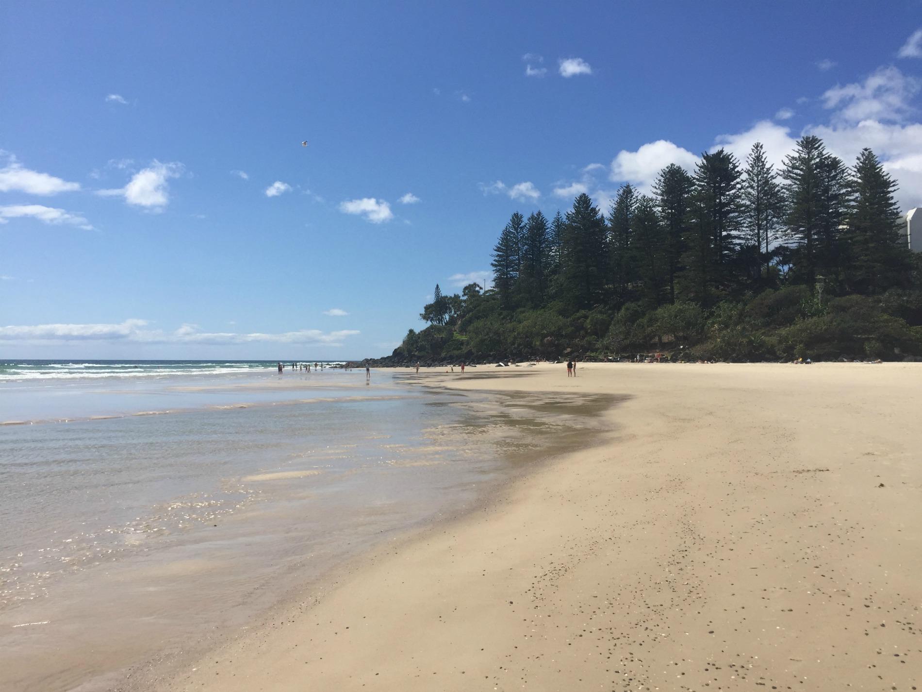 busiest month yet beach