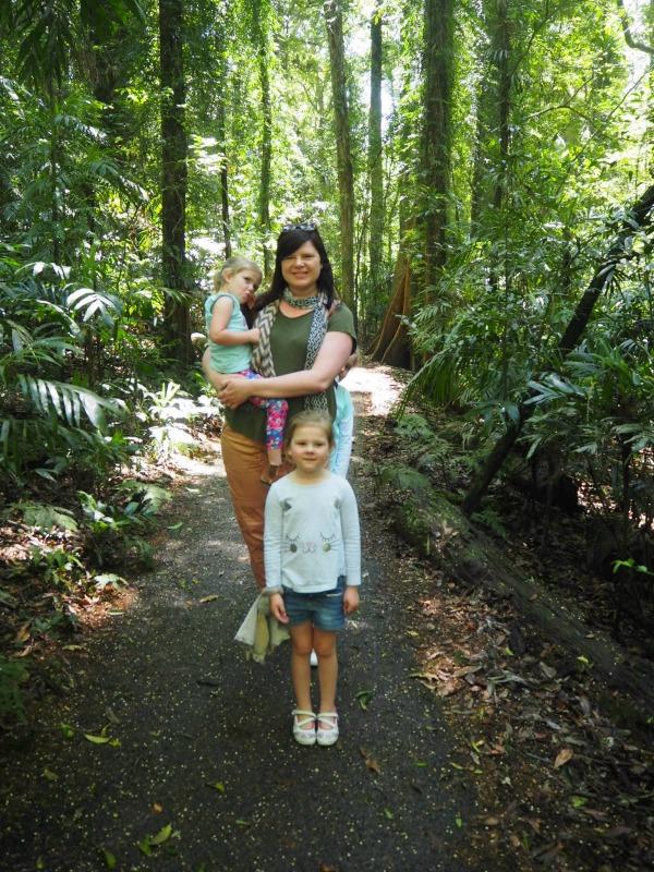 Dorrigo National Park Rainforest Walk Coffs Harbour