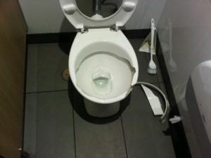 IMG00101-20121119-1153 broken toilet