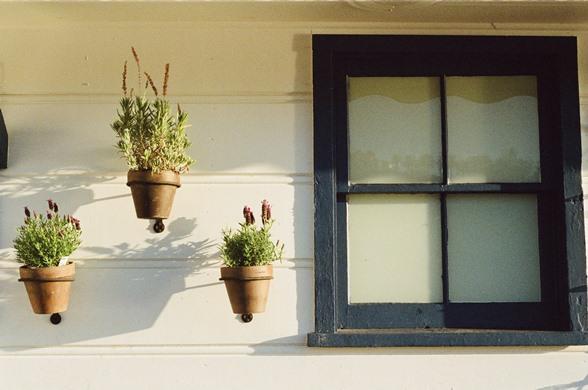 flowerpots-house-window-2539