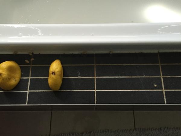 added lemon