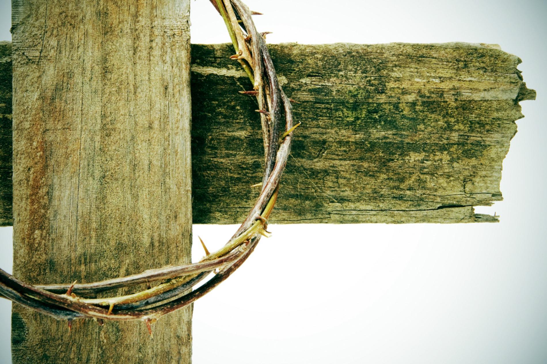 wealth is in the cross