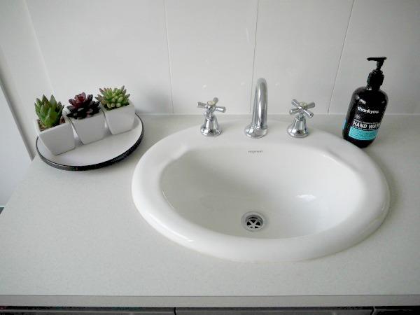 bathroom vanity succulent plants