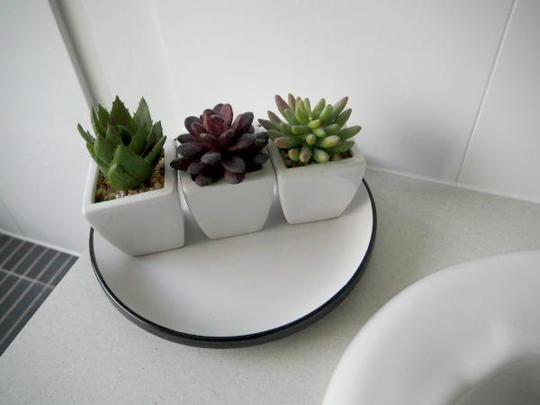 faux succulents indoor plants