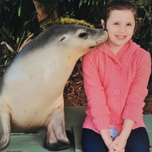 Dolpin marine magic kiss from seal