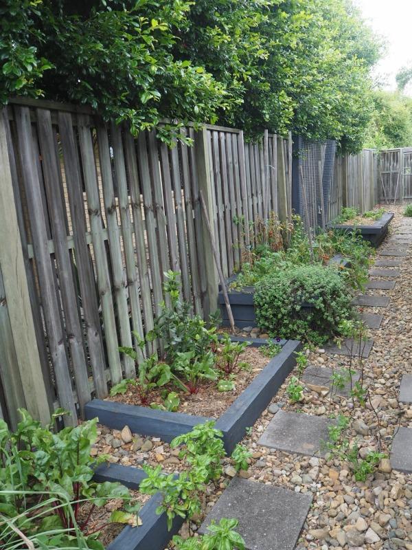 tidied veggie garden