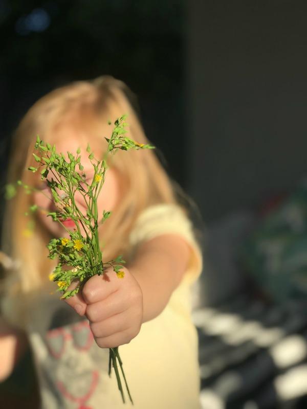 weeds as flowers