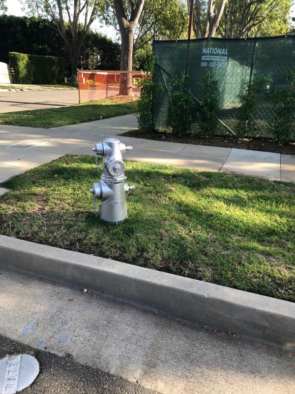 platinum fire hydrant beverly hills