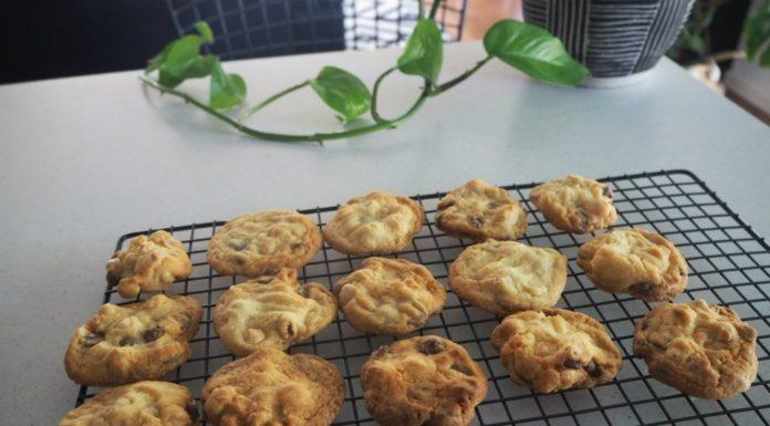 Double Choc Chip Hazelnut Cookies