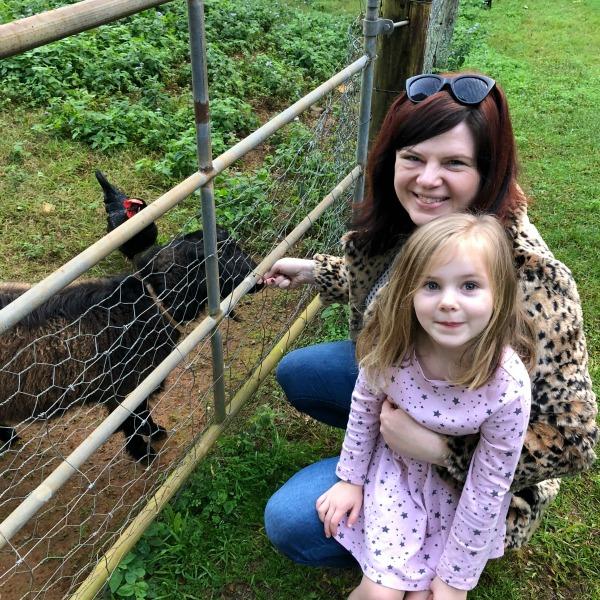 Family farm Alstonville