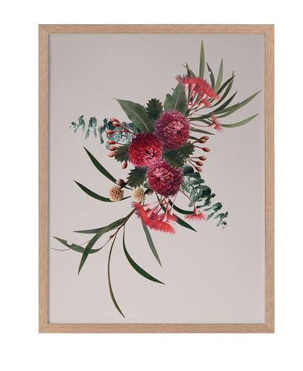 Australian Native Flower Artwork