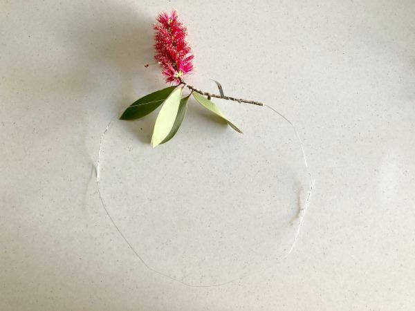 bottle brush flower for australian native floral wreath