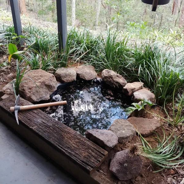 water pond in garden