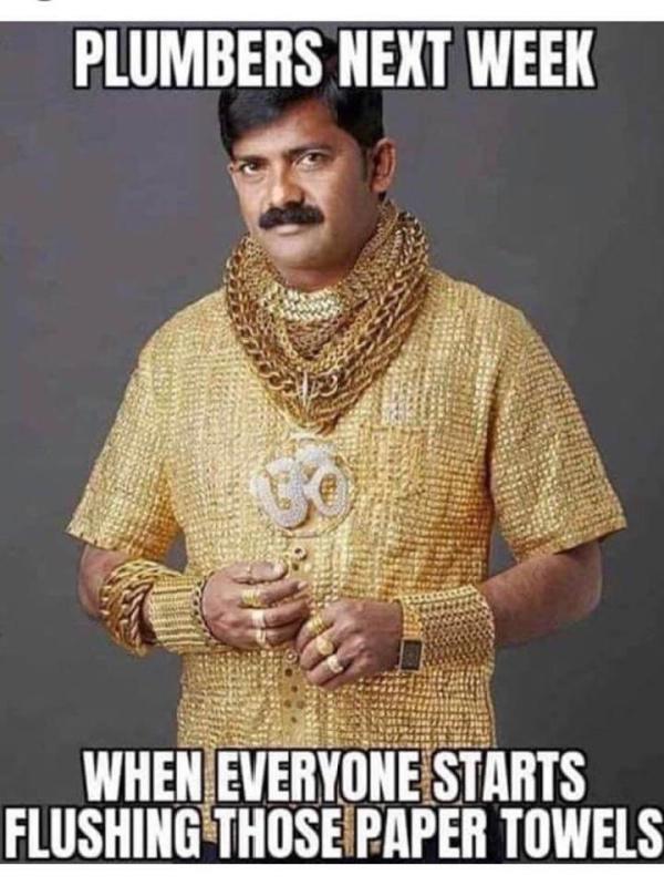 plumbers in gold